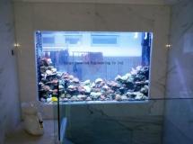 山頂住宅4000L珊瑚缸