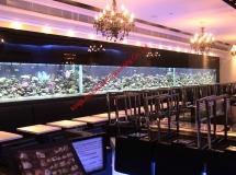 銅鑼灣餐廳20米珊瑚缸