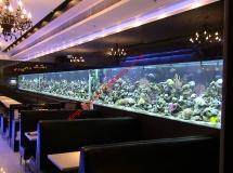 銅鑼灣餐廳20米珊瑚缸1
