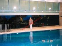 畢架山一號70尺魚缸