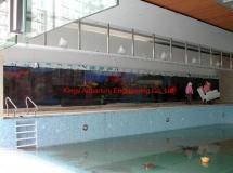 畢架山一號70尺魚缸1