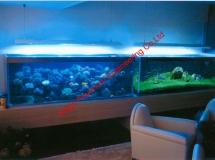 赤柱住宅2000L珊瑚及水草缸