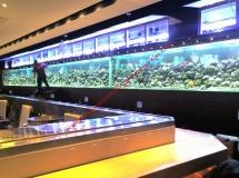 金馬倫道餐廳21米魚缸