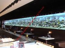 金馬倫道餐廳21米魚缸2