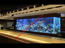 雅蘭中心2300L珊瑚缸