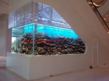 越南大型商場9000L珊瑚缸1