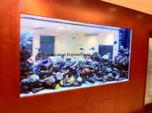 九龍塘住宅2500L珊瑚缸