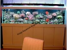 西貢住宅1100L珊瑚缸
