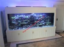 越南河內市住宅1200L珊瑚缸