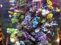 大型人造珊瑚1